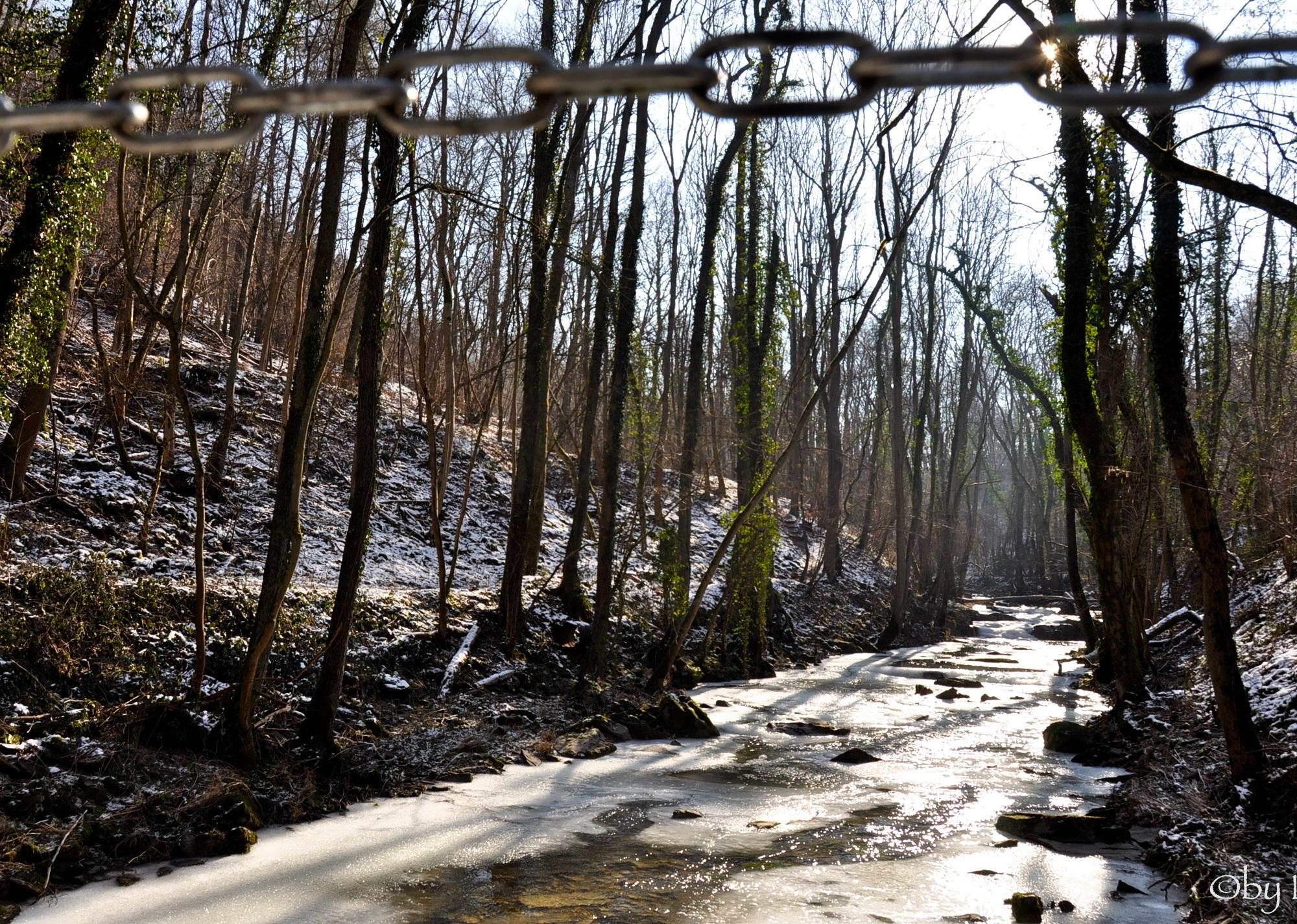 wintertime in Lorraine